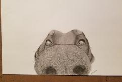 Sketch.Boop.20170308